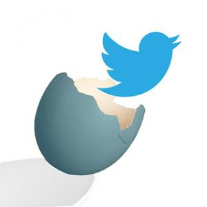 Twitter icon emerging from an egg